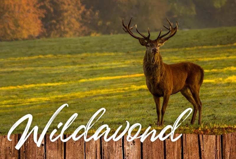 Wildavond - Someren